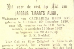 Alma Jacobus Tjaarts