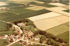Niekerk 1978 (Large)